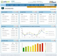 Web based CRM Screen