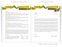 CV Template • CV Template Package Includes:Professional layout for 2 pages in DOC - file. • Curriculum Vitae Templates • Resume Templates • Cover Letter Templates • CVspecial.com
