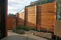 Banyon Tree Design Portfolio - contemporary - landscape - seattle - by Lisa Port, APLD