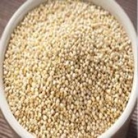 Nutrition | FoodAthlete.com