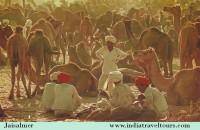 The Marwari Circuit of the Shekhawati Region in India's Rajasthan - Tripatini