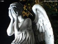 Resultados da Pesquisa de imagens do Google para http://1.bp.blogspot.com/-ZgQBv9Cb31k/TcgBTKyuhlI/AAAAAAAAAjA/NqPhxOjhkbY/s1600/weeping-angel.jpg