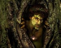 Viridios by Susan Schroder - Digital Artist