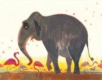 elephant_scan.jpg (530×414)