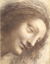 leonardo-drawings-head-of-the-vergin-met.jpg (399×512)