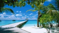 ocean,landscapes ocean landscapes beach maldives palm trees blue skies 1920x1080 wallpaper – ocean,landscapes ocean landscapes beach maldives palm trees blue skies 1920x1080 wallpaper – Oceans Wallpaper – Desktop Wallpaper