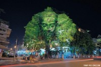 ASTONISHING! Cool 3D Projection Over Trees (10 IMAGES) – Funny Pics Space « Funny Pics Space