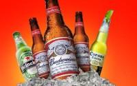 alcohol,beers beers alcohol heineken budweiser ice cubes 1920x1200 wallpaper – alcohol,beers beers alcohol heineken budweiser ice cubes 1920x1200 wallpaper – Beers Wallpaper – Desktop Wallpaper