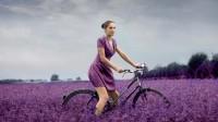 photodune-2243017-lavender-m.jpg (1020×570)