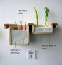 Fresh Food without a Fridge — Lost At E Minor: For creative people