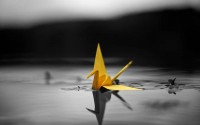abstract,origami abstract origami selective coloring 1920x1200 wallpaper – abstract,origami abstract origami selective coloring 1920x1200 wallpaper – Selective coloring Wallpaper – Desktop Wallpaper