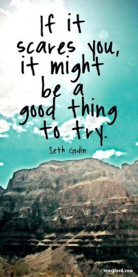 If it scares you, it might be a good thing to try. Quote by Seth Godin.