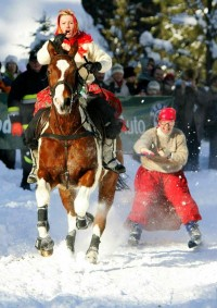 snow,crazy snow crazy horses ski scarfs racing 1784x2530 wallpaper – snow,crazy snow crazy horses ski scarfs racing 1784x2530 wallpaper – Horses Wallpaper – Desktop Wallpaper