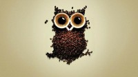 funny,coffee coffee funny cups owls coffee beans 1920x1080 wallpaper – funny,coffee coffee funny cups owls coffee beans 1920x1080 wallpaper – Funny Wallpaper – Desktop Wallpaper