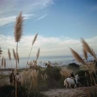 Yellow Korner : Photograph : Pebble Beach - Slim Aarons
