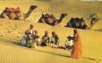 Dinesh Kumar's Likes | StumbleUpon.com