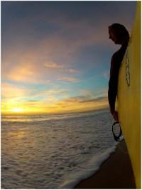 swop surfboards