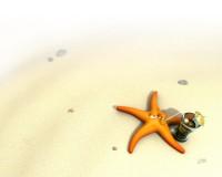 Starfish by ~nicobou