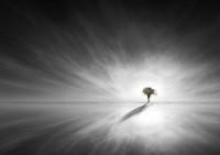 Fotoblur - own by karya ardhi perdana