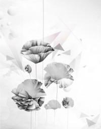 Poppy Art Print by Glova Yevgeniya | Society6