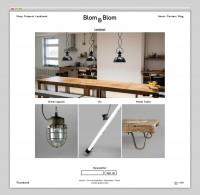 Websites — Blom & Blom