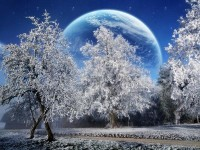 magic winter 1600x1200 wallpaper – magic winter 1600x1200 wallpaper – Magic Wallpaper – Desktop Wallpaper