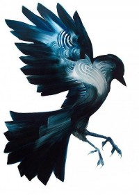 Beautiful paintings of birds by Adam Doyle — Lost At E Minor: For creative people