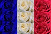 flowers france flags 1600x1066 wallpaper – France Wallpaper – Computer Desktop Wallpapers