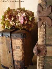 2'm+Une+valise+à+mémoire+-+Un+Cœur+en+Provence+©.jpg (image)