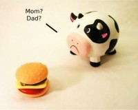 funny,cows funny cows hamburgers 1280x1024 wallpaper – Funny Wallpapers – Free Desktop Wallpapers