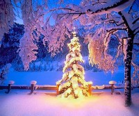christmas by ~Abakum
