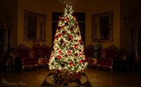 Christmas Tree 2010 by ~BttrflyKisses