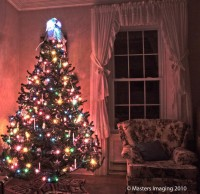 My Christmas Tree HDR by ~nathan-101