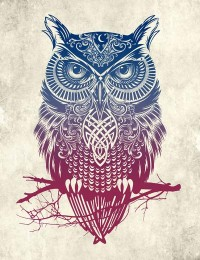 Evening Warrior Owl Stretched Canvas by Rachel Caldwell | Society6
