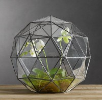 Fancy - Geodesic Terrarium