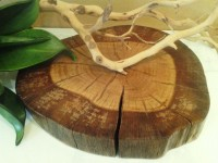 Rustic Oak Tree Slice Rustic wedding decor by JTLCREATIONS