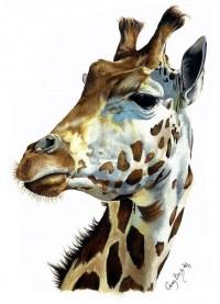giraffe by xbrightwingx   Shadowness