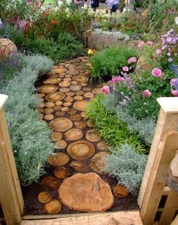 Log path at Shrewsbury Flower show : Grows on You
