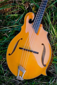 Contemporary — Custom handmade mandolins from BRW Musical Instruments