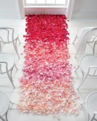 2012 Trends / Ombre aisle