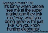 elephant funny quote teenager post teenager posts- Lol Image