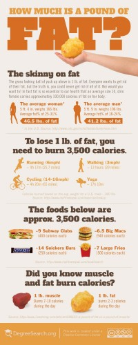 How Much is a Pound of Fat? [infographic] | Education Insights