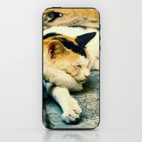 Sleep tight abandoned cat! iPhone & iPod Skin by pascal+ | Society6