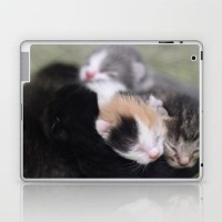 Valentines day Kittens Laptop & iPad Skin by Veronica Ventress | Society6