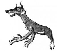 Le Drac: un diable qui a l'aspet d'un âne
