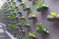 Urban Vertical Garden Built From Hundreds of Recycled Soda Bottles | Colossal