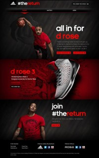 adidas: All in D Rose sur la conception Web Servi