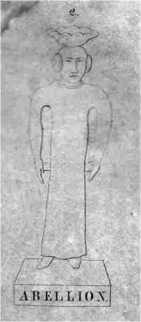 Abellion.jpg (262×600)