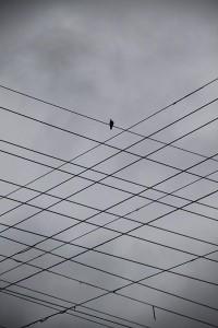 minimalism+1.jpg 1'067×1'600 Pixel