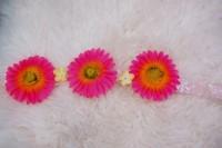 DIY Flower Headband on Audrey Kitching's Blog - Buzznet
